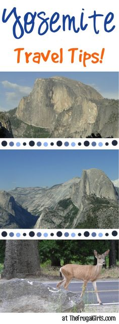 Yosemite National Park Things to Do!  14 Hikes, View Points, and Gorgeous Spots for Photography opportunities you can't afford to miss on your next visit! | TheFrugalGirls.com