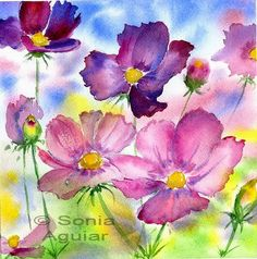 ... Flower Watercolor Art - Cosmos flowers   by Sonia Aguiar (Mallorca)