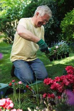 How to Start a Garden in 7 Easy Steps