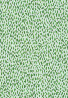 CITRA, Grass, W80456, Collection Woven 10: Menagerie from Thibaut