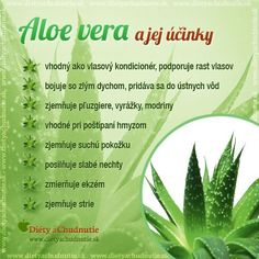 Dieta Detox, Aloe Vera, Medicinal Herbs, Herbalife, Fruits And Veggies, Raw Food Recipes, Wellness, Planer, Natural Health