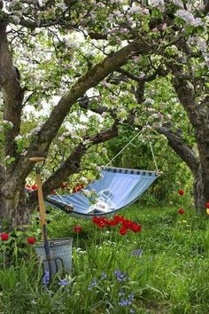 ofmessandglory: countrynest: Old orchard and a hammock… I can see myself there! ofmessandglory: countrynest: Old orchard and a hammock… I can see myself there Garden Cottage, Home And Garden, Garden Living, Farm Cottage, Garden In The Woods, Easy Garden, Spring Garden, Winter Garden, Outdoor Reading Nooks