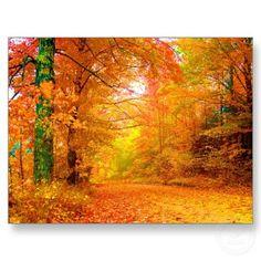 Vermont Autumn Post Card