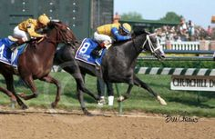 Winning Colors- 3rd (and last) filly to ever win the Kentucky Derby.  Go-girls-go, we need another chick on top this Saturday!