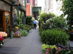 NYC flower district.