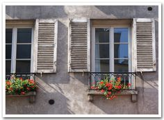 white shutters, red flowers... taken in the 5th arrondissement of paris.