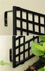 Image result for espalier iron wall trellis