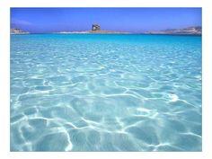 Privato affitta in Sardegna appartamenti per vacanze vicino al mare