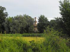 Spunta la Cascina Lago scuro dalla vegetazione - Stagno Lombardo - Provincia di Cremona - Maggio 2013