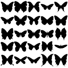 shadow box paper butterflies. I would print and use these for stencils