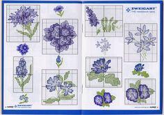 Gallery.ru / Фото #9 - CSCr 101 Flowers - kactus01