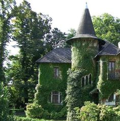 What an interesting ivy covered house.The turret must house a staircase as it has windows winding around in an ascending fashion.The house appears a bit austere. Storybook Homes, Storybook Cottage, Witch Cottage, Witch House, Abandoned Houses, Old Houses, Beautiful Homes, Beautiful Places, Fairytale House