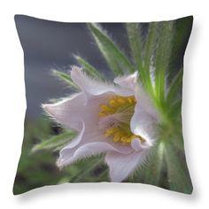 Mo Barton Throw Pillow featuring the photograph Pulsatilla Vulgaris Early Spring by Mo Barton