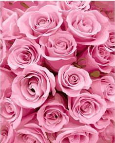 Pink flowers must be some of the most popular on planet - we have rounded up the most popular varieties of pink flowers. flowers flowers names pink flowers My Flower, Pretty Flowers, Pink Flowers, Colorful Roses, Pink Petals, Purple Roses, Exotic Flowers, Tropical Flowers, Summer Flowers