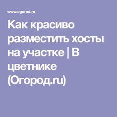 Как красиво разместить хосты на участке | В цветнике (Огород.ru)
