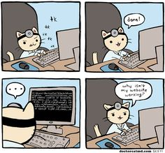 The woes of being a doctor ... and a web dev and a cat.