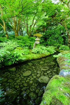Butchart Gardens, Victoria, British Columbia. #hfwiththeuglymkboy #hfatredsquare #havefunwiththecokesniffers