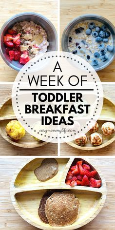 Get these easy and healthy toddler breakfasts ideas. Includes simple recipes for busy moms like breakfast muffins, pancakes that are picky eater friendly. These toddler breakfasts can be to-go or planned ahead overnight. #toddlermeals #toddlerbreakfast #toddlermealideas #healthytoddlermeals #pickyeater #toddlerbreakfastideas #homemadebabyfood #weaningrecipes Easy Toddler Snacks, Healthy Toddler Breakfast, Baby Breakfast, Healthy Toddler Meals, Breakfast Muffins, Easy Snacks, Kids Meals, Toddler Food, Breakfast Ideas