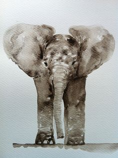 Elephant (by barbaraluel). Somewhere to go that I could ride an elephant would make my life! Art And Illustration, Illustrations, Animals Watercolor, Watercolor Art, Elephant Watercolor, Watercolor Feather, Elephant Love, Elephant Art, Art Graphique