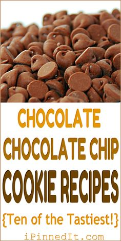 Chocolate Chocolate Chip Cookies Recipes {Ten of the Tastiest!}