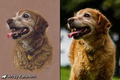 Why you need bespoke pet portraits. Give the most treasured gift for any animal lover, something unique and to be treasured for a lifetime.