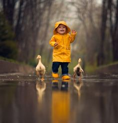 The Great Race by Jake Olson Studios