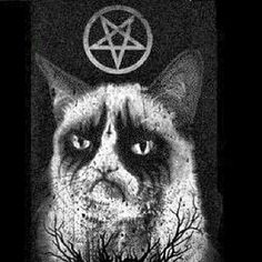 .@xguigowsx | #evilcat #blackmetal #satan