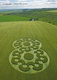 Crop Circle reported on the 16th of June 2010 in a field of Barley at Chirton Bottom, near Urchfont, Wiltshire UK