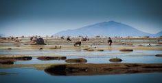 Uru Uru, uno de los Lagos de Bolivia