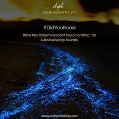 Feel see the stars floating below your feet at bioluminescent beach among the Lakshadweep Islands of India.
