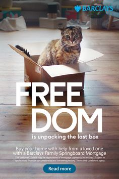 Freedom is unpacking the last box. Make money work for you How Soon Is Now, Bengal Kitten, Mortgage Payment, Buying A New Home, Cockatoo, How To Train Your Dragon, Raised Garden Beds, New Builds, Cute Baby Animals