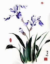 Картинки по запросу орхидея дикая форма