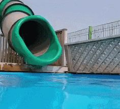 This is glorious.: #vwhatsapp #gifs #gif