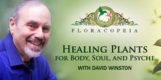 This free video training series with master herbalist David Winston, RH(AHG) will show you how to use herbs safely and effectively so that you can feel better emotionally, physically, and even spiritually.