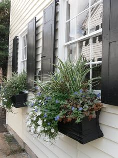 curb appeal from bungalow blue interiors - door colors, how-to potted plants, window boxes, lanterns, door numbers