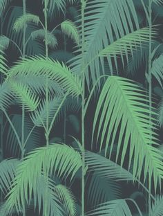 TAPET COLE & SON PALM JUNGLE