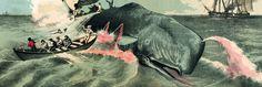 Le Japon veut poursuivre la chasse à la baleine