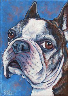 Spike the Brindle French Bulldog
