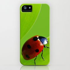 Ladybug iPhone Case by Tanja Riedel - $35.00