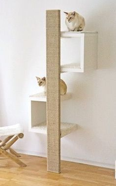 Stunning Cat Furniture Design Ideas That You Need To Try Ikea White Shelves, Ikea Lack Shelves, Cat Wall Shelves, Vesper Cat Furniture, Modern Cat Furniture, Pet Furniture, Furniture Design, Furniture Cleaning, Animal Room