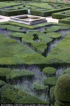 ♂ Green landscaping The ornamental music garden at Villandry