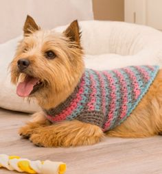 Red Heart Crochet Dog Sweater Pattern (FREE)
