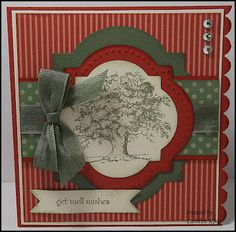 King's on Paddington: Get Well Kit - Stampin Up Window Frames Collections Framelits & Lovely as a Tree Stamp Set