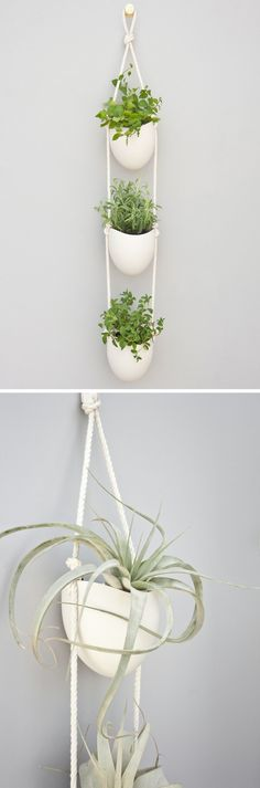 This gorgeous piece elevates the traditional hanging planter through its subtle, sophisticated design. Each porcelain planter by Brooklyn-based artist Farrah Sit is hand cast and crafted. The interior of the planter is glazed and features an elegantly twisted cotton rope strap.
