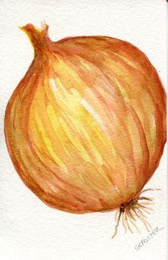 Yellow Onion Watercolor Painting original, kitchen art, Vegetable painting, 4 x 6 Spanish onion Watercolor Food, Watercolor Flowers, Watercolor Paintings, Small Paintings, Beautiful Paintings, Original Paintings, Arte Gcse, Onion Drawing, Vegetable Painting