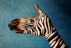 Body art - hand animals