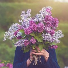 Giving Flowers, Holding Flowers, Wild Flowers, Beautiful Flowers, Beautiful Pictures, Faceless Portrait, Flower Phone Wallpaper, Wallpaper Art, Photography Poses
