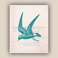 Petrel  Print,  Sea Bird 8x10 print ,  Marine Wall Decor, Nautical art,  Seashore art  Print, Coastal Living by AlgaNet on Etsy https://www.etsy.com/listing/104468010/petrel-print-sea-bird-8x10-print-marine