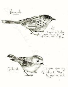 Birdwatching PRINT