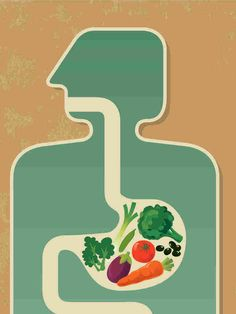 There is still plenty of research to be done on gut health, but one thing is certain...Fiber is your friend!